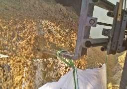 Sand Stapler Big Bag